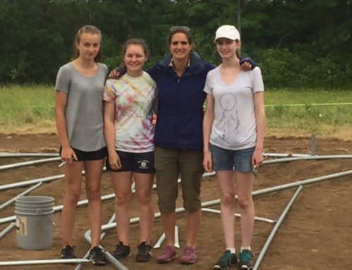 New Cornucopia Project Greenhouse Goes Up at Vose Farm Business Center